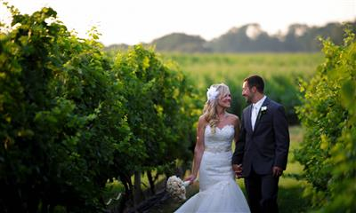 View Photo - Bride and groom holding hands in vineyard