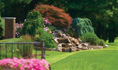 View Photo - Garden view