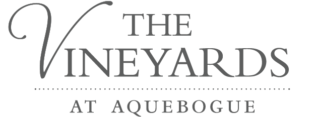 the-vineyards-at-aquebogue Logo