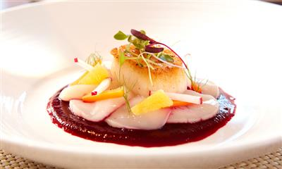 View Photo #11 - Scallop