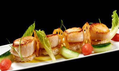 View Photo #20 - Scallops