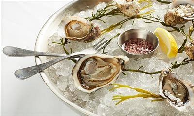View Photo #5 - Oysters