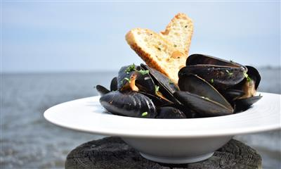 View Photo #1 - Mussels