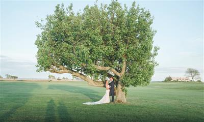 View Photo #4 - Couple under tree