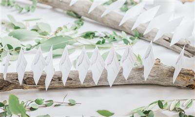 View Photo #11 - Escort Cards
