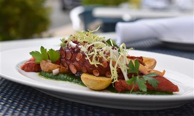 View Photo #9 - Charred Octopus, parsley coulis, roasted tomato, fingerling potatoes, micro celery salad