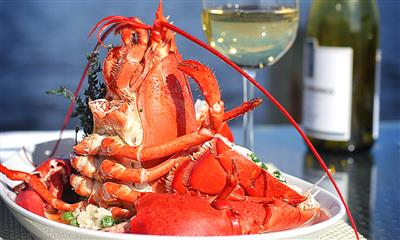 View Photo #8 - Lobster