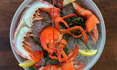 View Photo #2 - Chilled Lobster