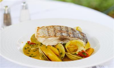 View Photo #10 - Fish Dish