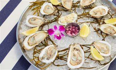 View Photo #8 - Oysters