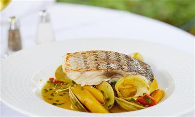 View Photo #16 - Fish Dish